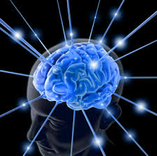 BRAIN SPIKE IMAGE LIGHTS