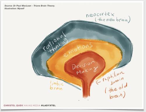 Triune brain artist impression